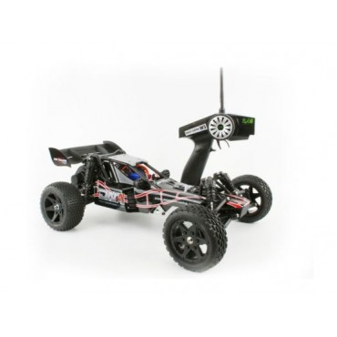 Buggy 2WD DNA RTR 2.4Ghz Off-Road 1:10